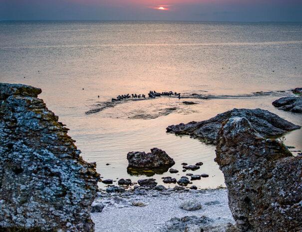 Hav och strand på Gotland