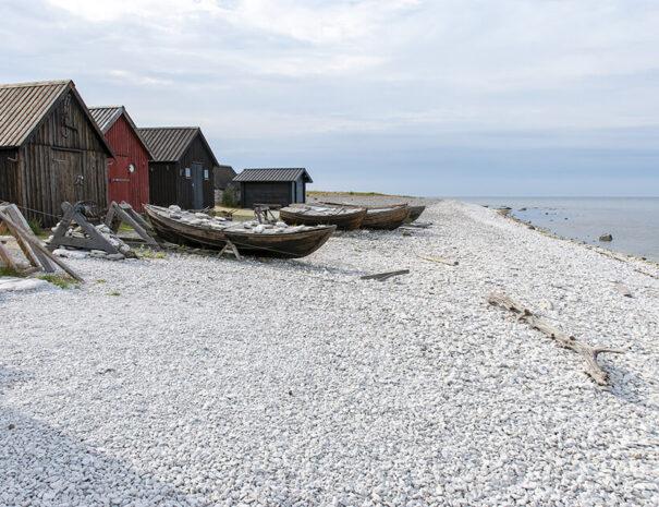 Vacker miljö vid havet Gotland