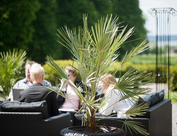 Möten och konferens utomhus på Rånäs slott