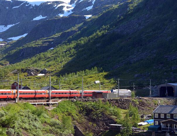 Tåg i Norge mellan Oslo och Bergen